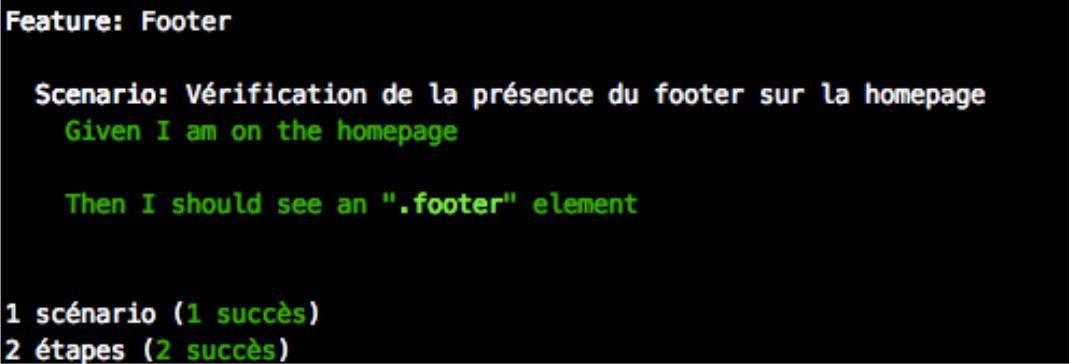 Capture d'écran du terminal lors d'un test avec Behat