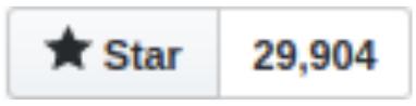 """Nombre de """"stars"""" sur github pour Next.js avec le chiffre de 29 904"""